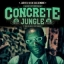 CHRONIC SOUND + UNITY SOUND @CONCRETE JUNGLE (The Jungle Sessions Madrid) Jueves 18 Diciembre